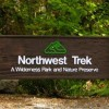 Active Military & Vets Have Free Admission to Northwest Trek and Point Defiance Zoo Friday!